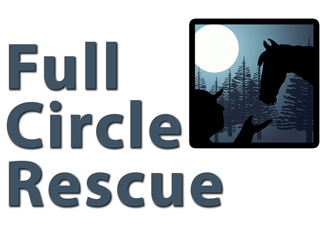 Full Circle Rescue | Equine Rehab